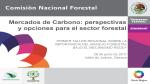 2011 29junio SEMARNAT Mercados de Carbono perspectivas y opciones para el sector forestal